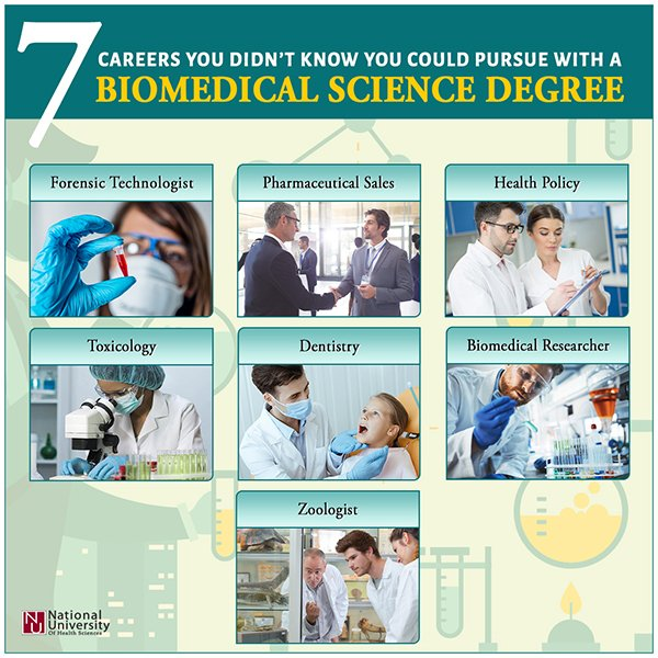 7 Careers you didnt know you could pursue with a BS degree