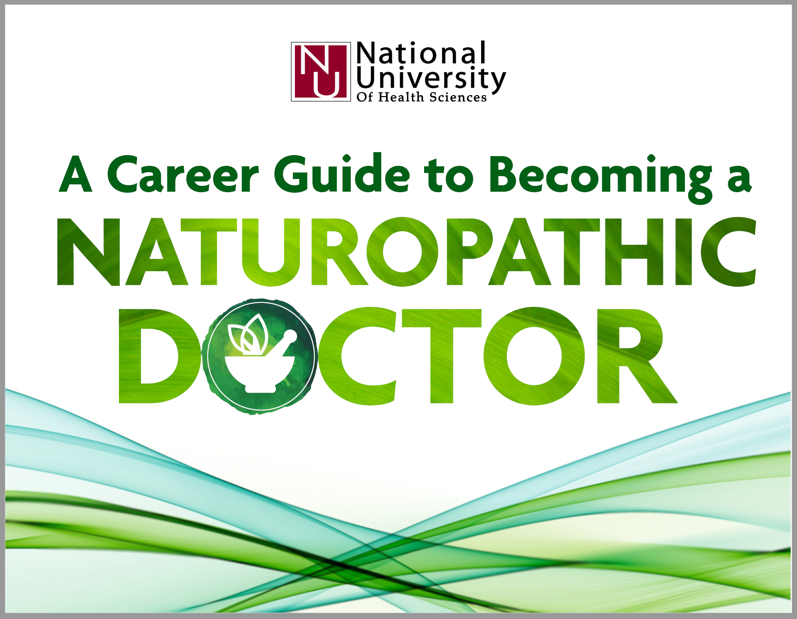 a career guide to naturopathic doctor cover