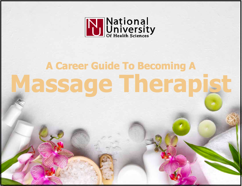 Massage Therapy Guide Cover-border