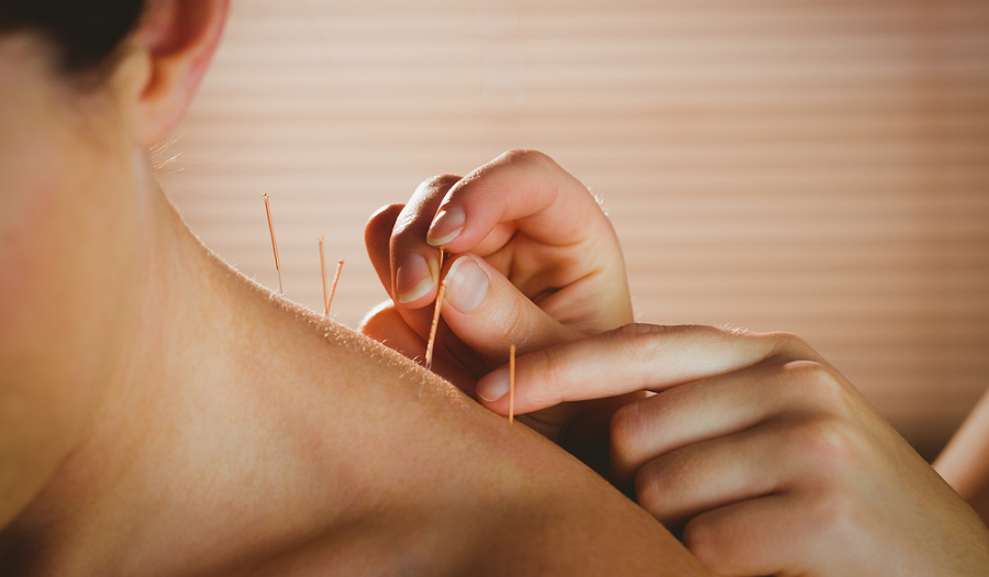 How Cadaver Dissection at NUHS Helps Train Better Acupuncturists